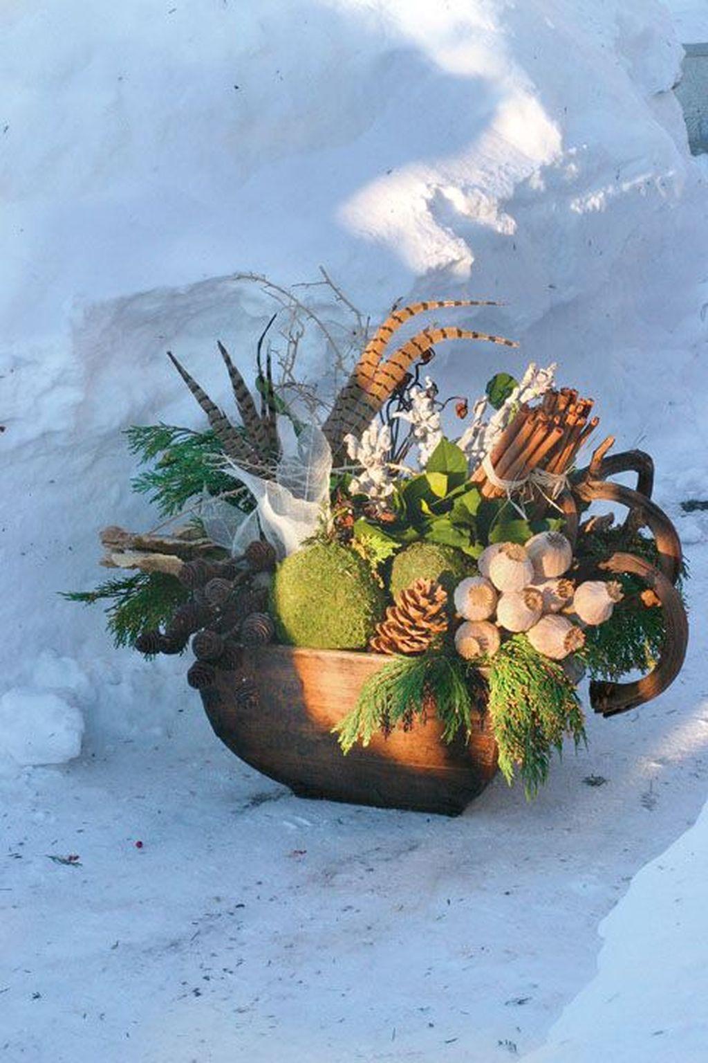 Inspiring Winter Container Gardening Ideas 20