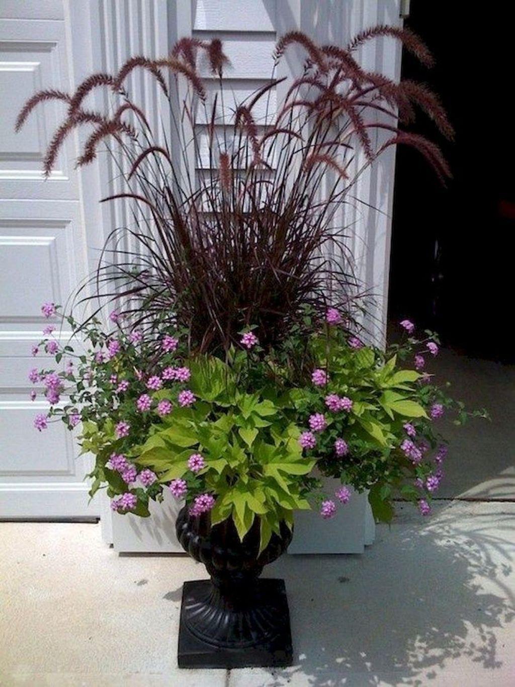 Inspiring Winter Container Gardening Ideas 23