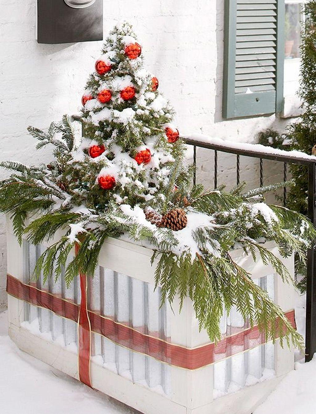 Inspiring Winter Container Gardening Ideas 24