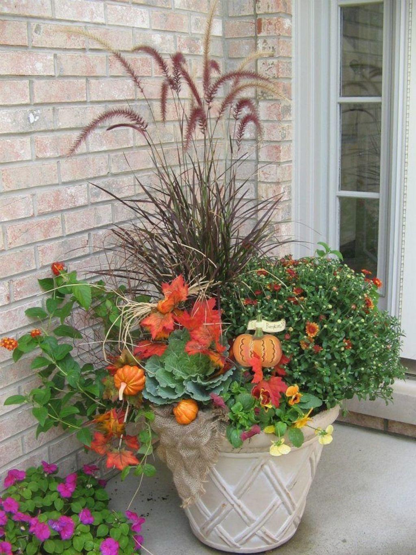 Inspiring Winter Container Gardening Ideas 29