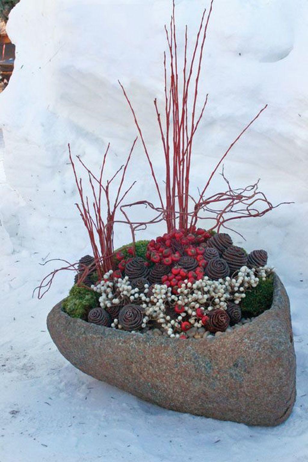 Inspiring Winter Container Gardening Ideas 30