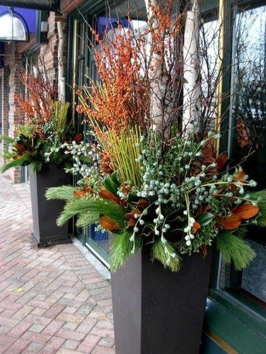 Inspiring Winter Container Gardening Ideas 33