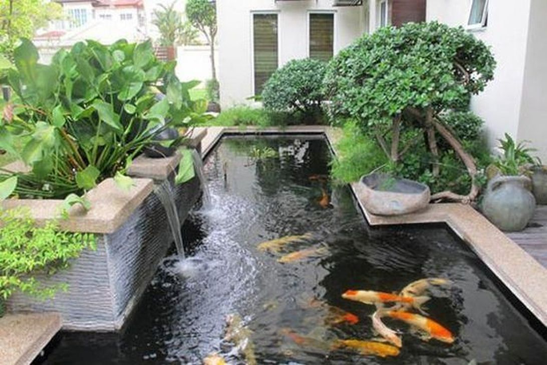 Nice Fish Ponds Backyard Decoration Ideas 17