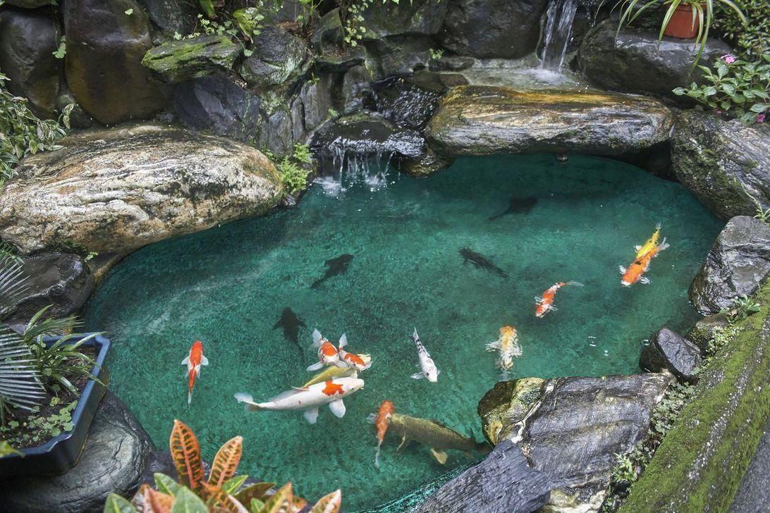 Nice Fish Ponds Backyard Decoration Ideas 25