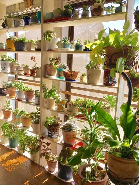 The Best Indoor Garden Ideas To Beautify Your Home 07