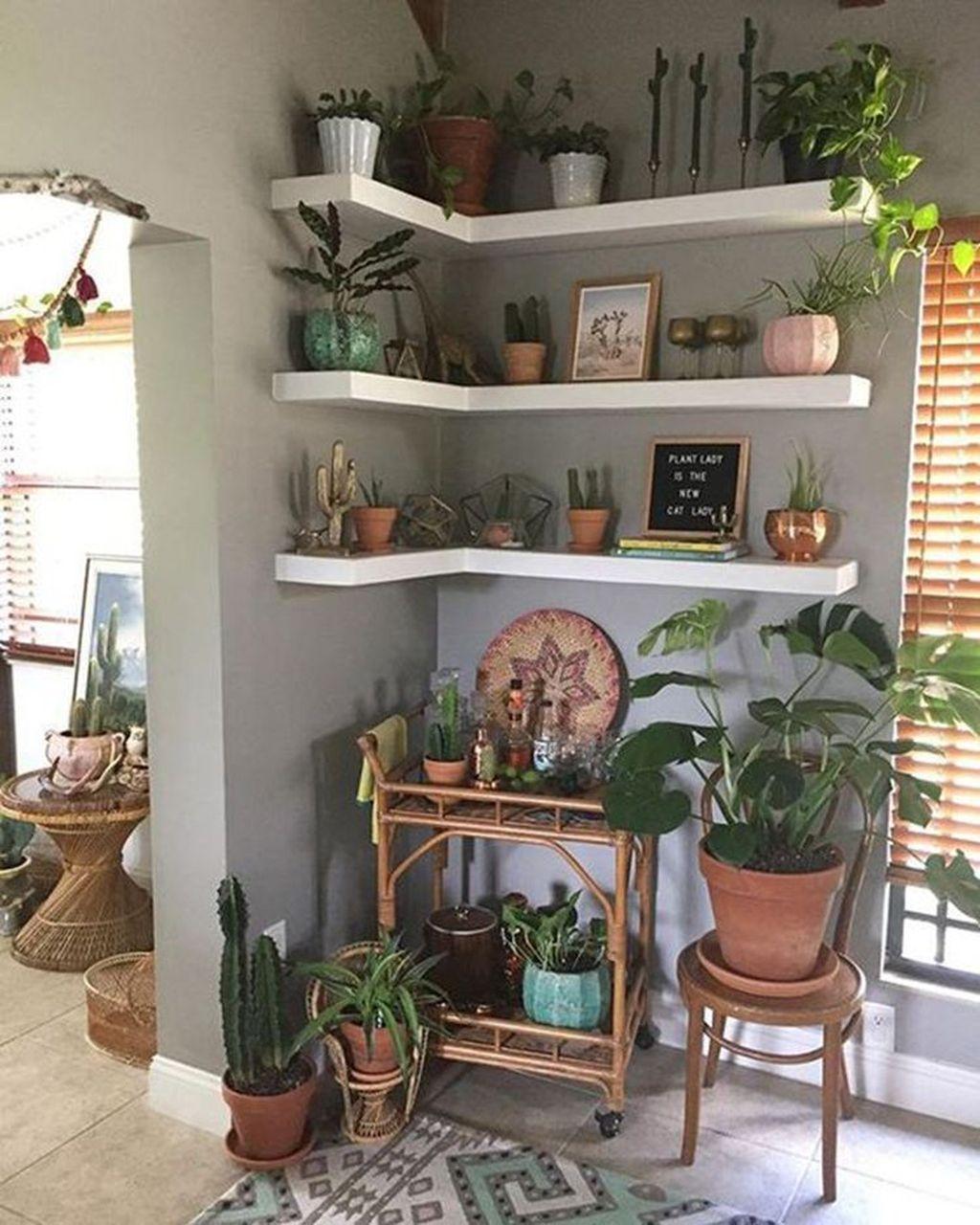 The Best Indoor Garden Ideas To Beautify Your Home 17