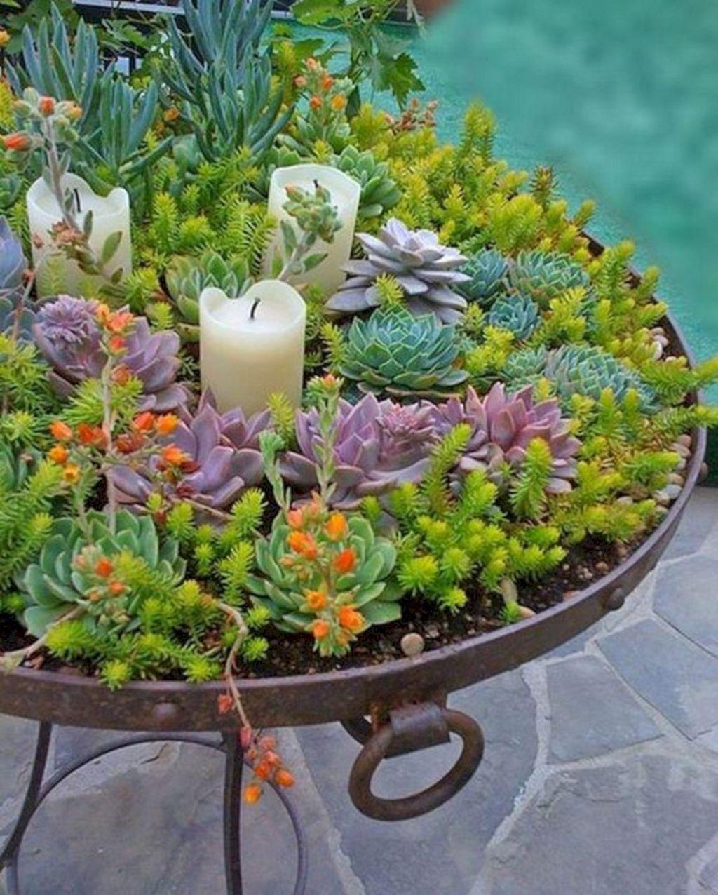 Beautiful Outdoor Succulent Planter Ideas 06