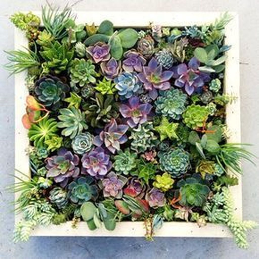 Beautiful Outdoor Succulent Planter Ideas 17