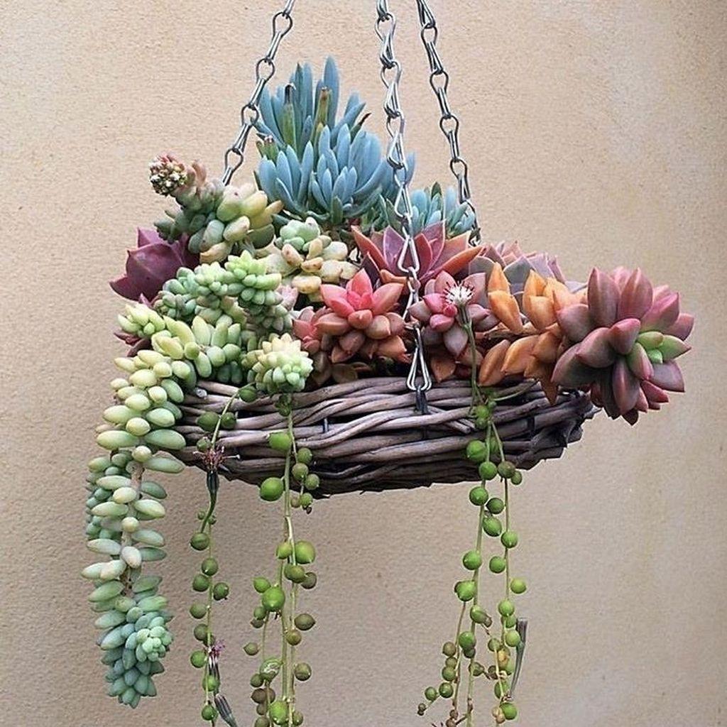 Beautiful Outdoor Succulent Planter Ideas 26