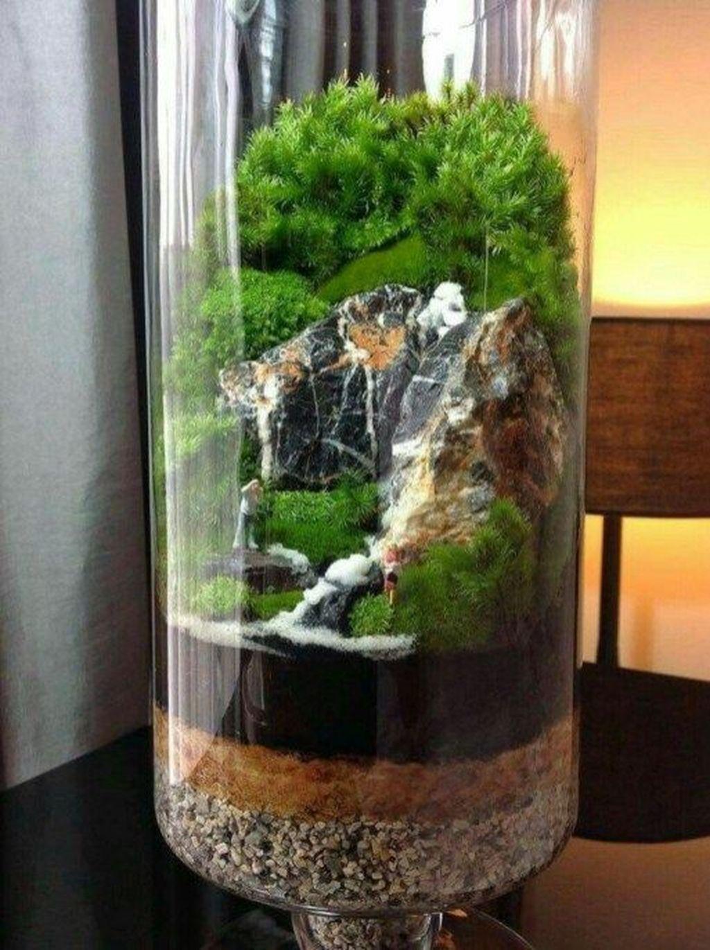 Inspiring Indoor Garden Succulent Ideas 04