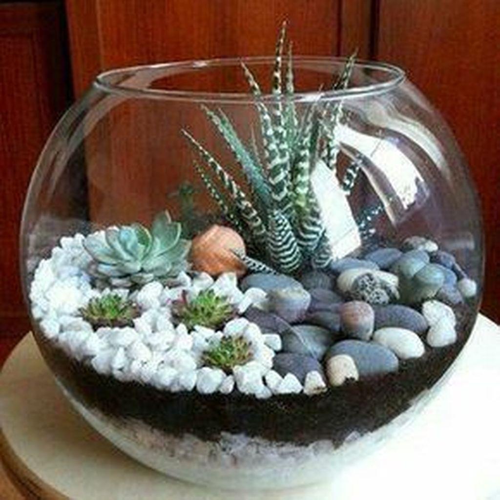 Inspiring Indoor Garden Succulent Ideas 26