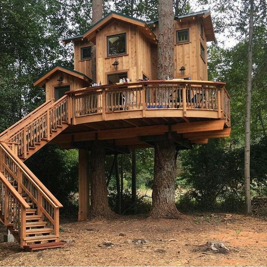 Stunning Tree House Designs You Never Seen Before 13