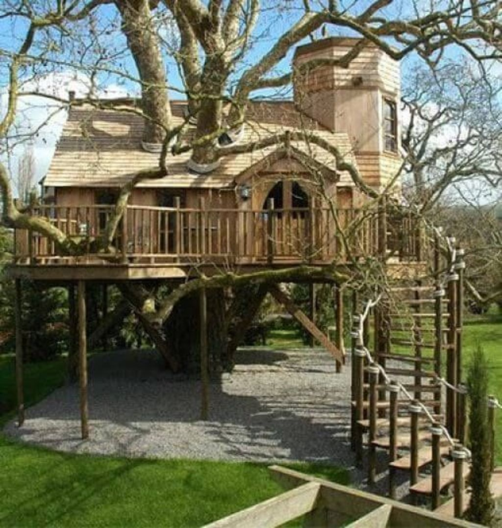 Stunning Tree House Designs You Never Seen Before 17