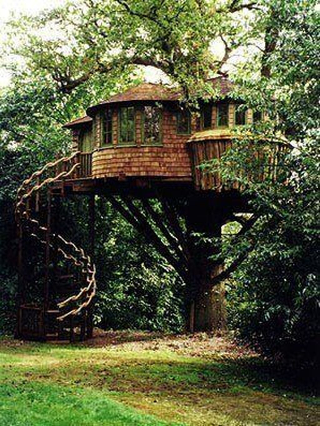 Stunning Tree House Designs You Never Seen Before 28