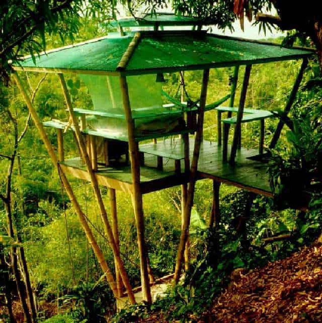 Stunning Tree House Designs You Never Seen Before 34