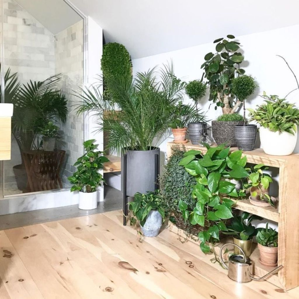 The Best Jungle Bathroom Decor Ideas To Get A Natural Impression 11