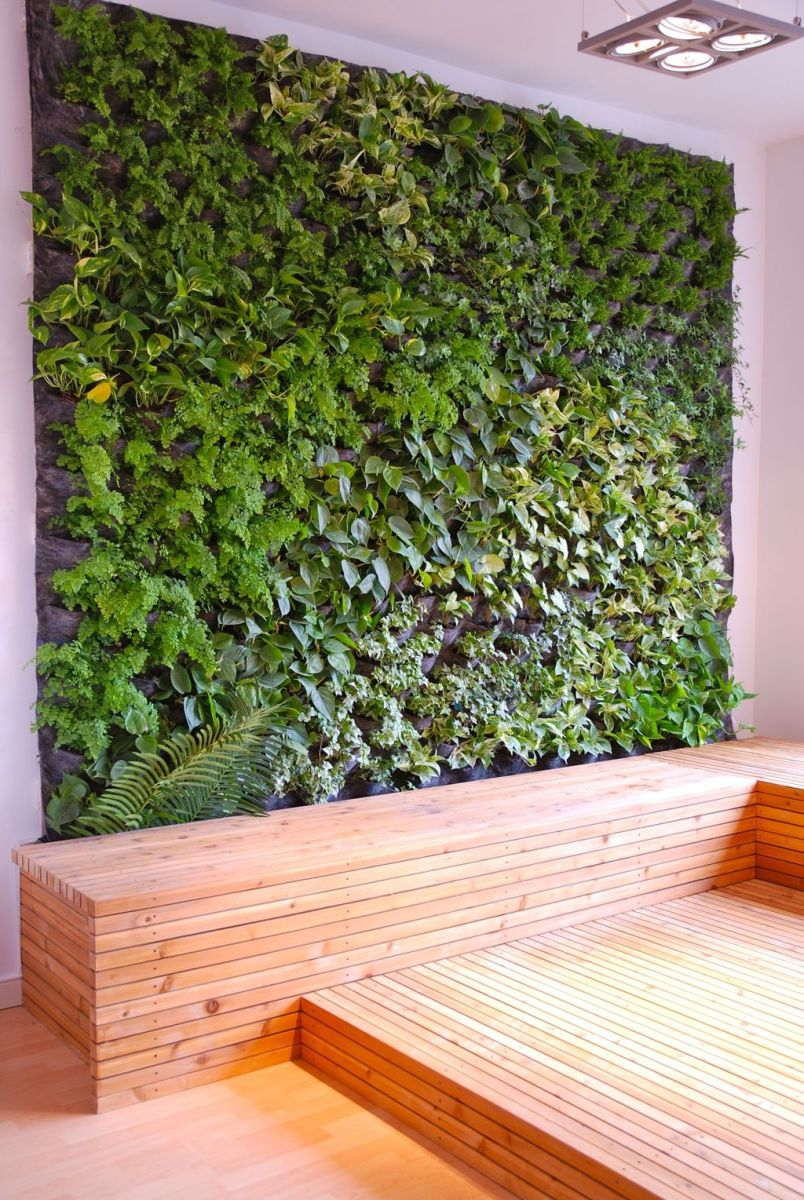 Beautiful Living Wall Indoor Decoration Ideas To Be A Fresh Home 11