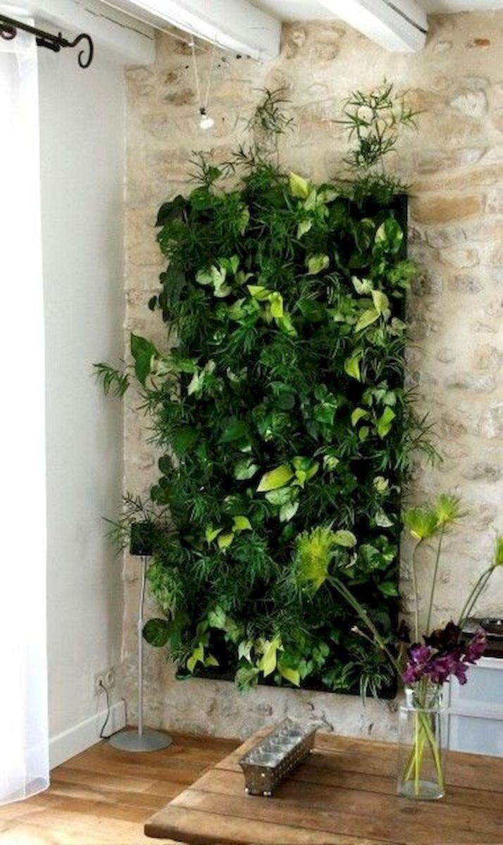 Beautiful Living Wall Indoor Decoration Ideas To Be A Fresh Home 33