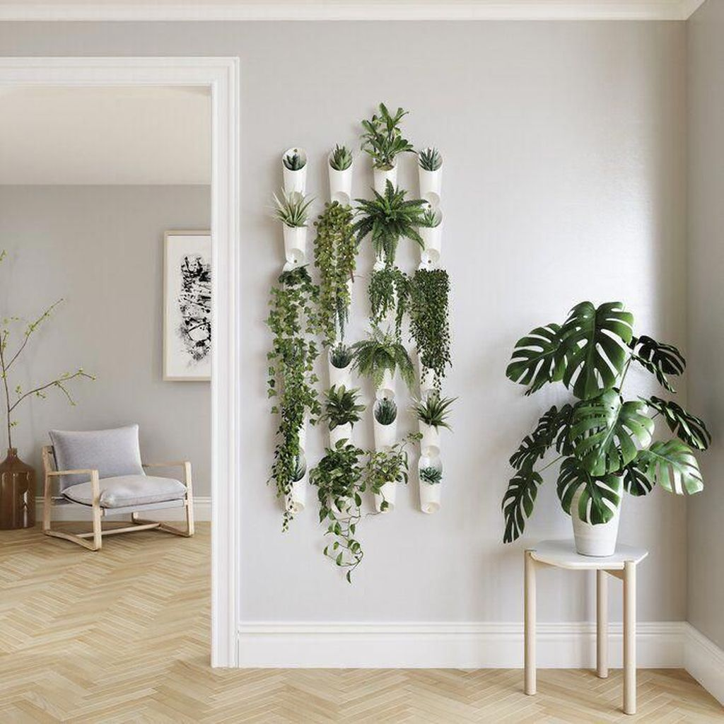 Beautiful Living Wall Indoor Decoration Ideas To Be A Fresh Home 34