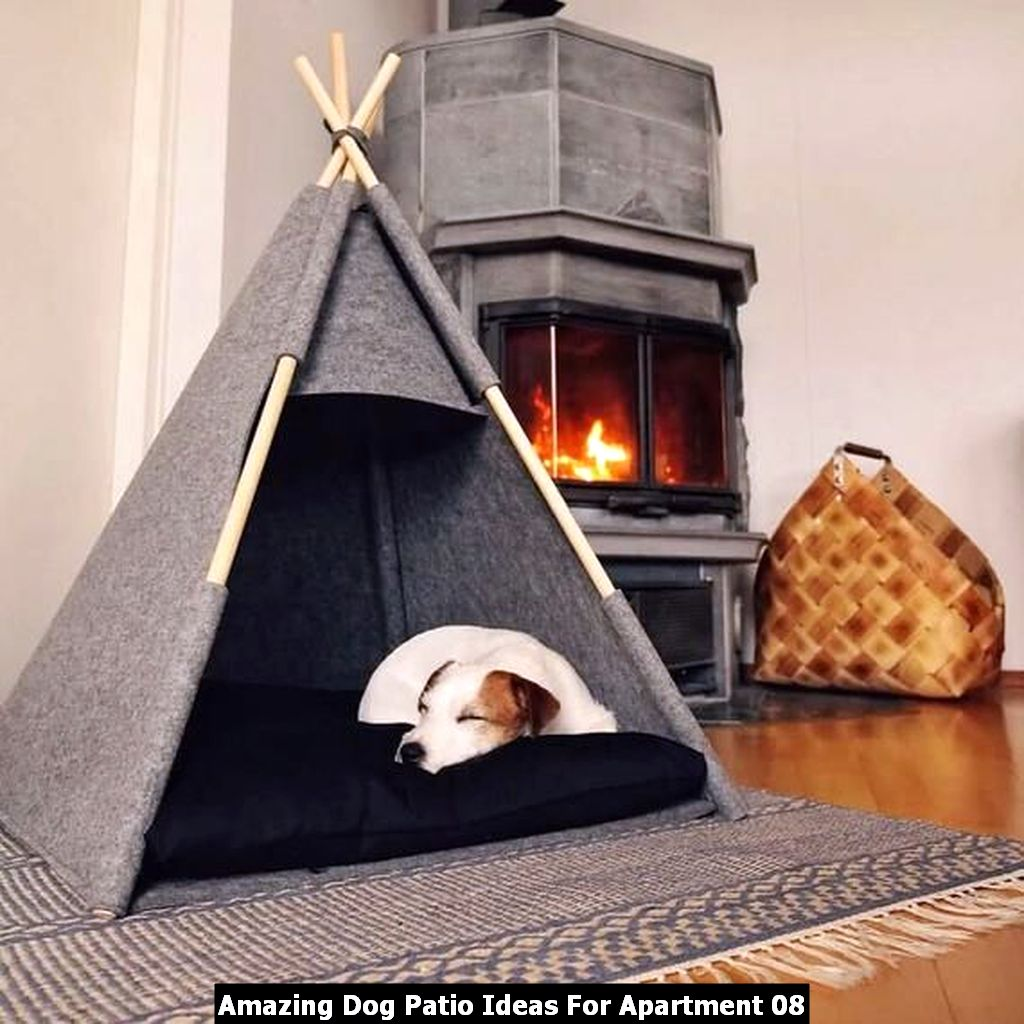 Amazing Dog Patio Ideas For Apartment 08