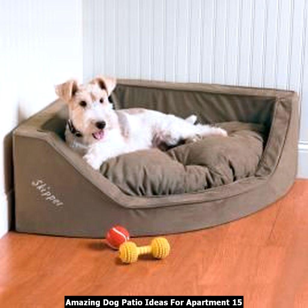 Amazing Dog Patio Ideas For Apartment 15