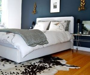 Blue Accent Wall Bedroom