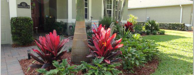 Low Maintenance Front Yard Landscaping Florida