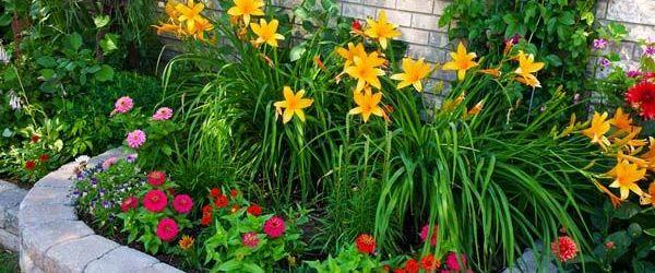 Easy Flower Garden Ideas