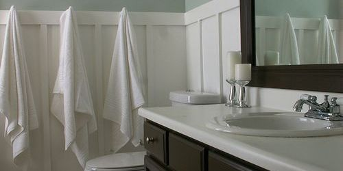 Sherwin Williams Sea Salt Bathroom