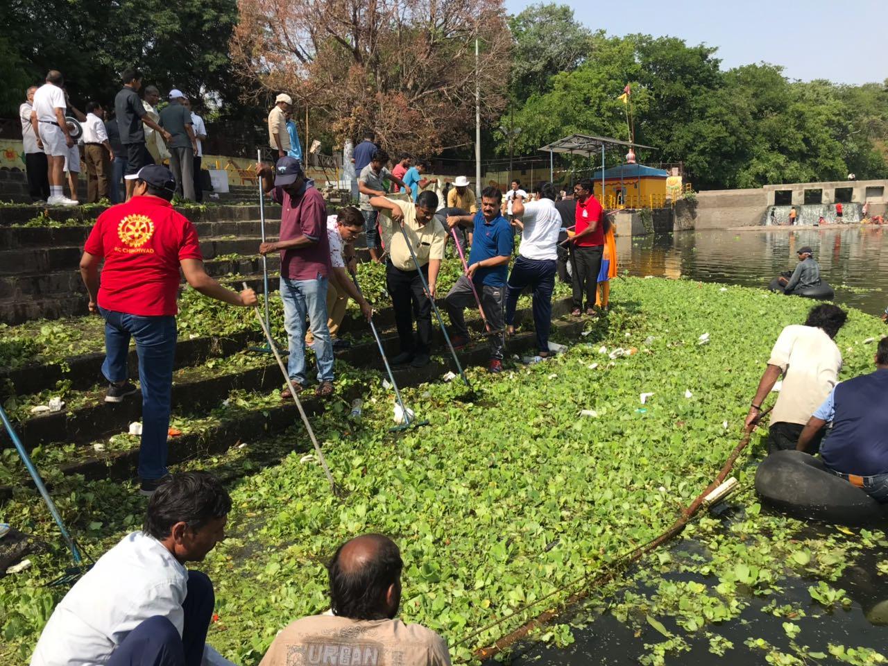 पवना जलपर्णीमुक्त अभियानांतंर्गत 2 ट्रक जलपर्णी काढली