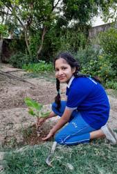 जसपुर : विश्व पर्यावरण दिवस के अवसर पर गणमान्यों/संस्थाओं ने किया वृक्षारोपण