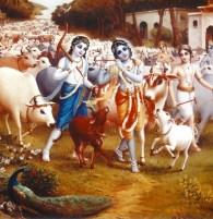 Krishna-Gopal-with-Cow