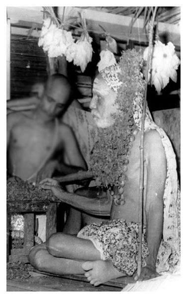 Mahaperiyava-pulithol.jpg