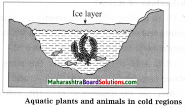 Maharashtra Board Class 10 Science Solutions Part 1 Chapter 5 Heat 6