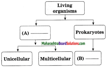Maharashtra Board Class 10 Science Solutions Part 2 Chapter 6 Animal Classification 33