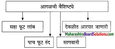 Maharashtra Board Class 10 Marathi Solutions Chapter 3 आजी कुटुंबाचं आगळ 10