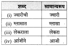 Maharashtra Board Class 10 Marathi Solutions Chapter 3 आजी कुटुंबाचं आगळ 31