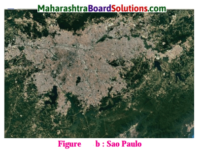 Maharashtra Board Class 10 Geography Solutions Chapter 7 Human Settlements 10