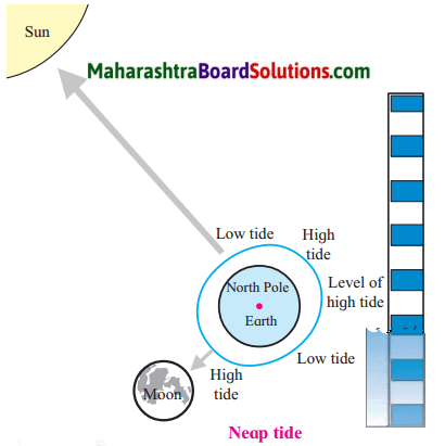 Maharashtra Board Class 7 Geography Solutions Chapter 3 Tides 8