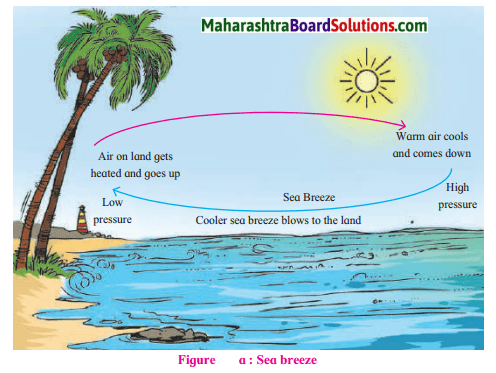Maharashtra Board Class 7 Geography Solutions Chapter 5 Winds 9