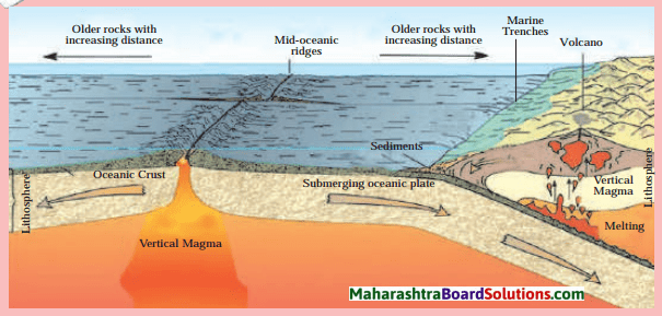 Maharashtra Board Class 8 Geography Solutions Chapter 4 Structure of Ocean Floor 4