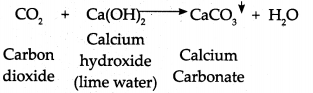 Maharashtra Board Class 9 Science Solutions Chapter 5 Acids, Bases and Salts 38