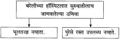 Maharashtra Board Class 10 Marathi Solutions Chapter 11 गोष्ट अरुणिमाची 9