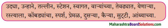 Maharashtra Board Class 6 Marathi Solutions Chapter 2 माझा अनुभव 2
