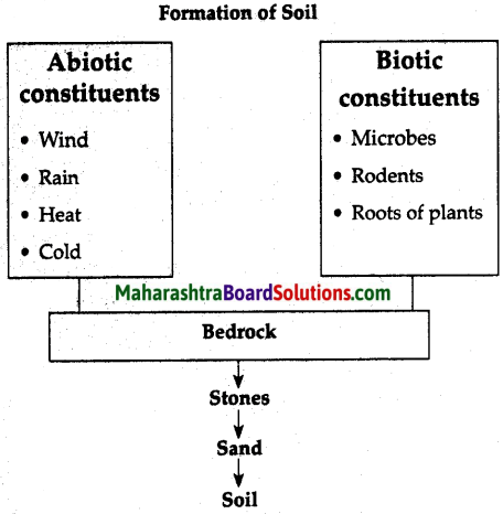 Maharashtra Board Class 6 Science Solutions Chapter 1 Natural Resources - Air, Water and Land 1