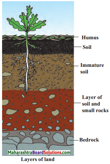 Maharashtra Board Class 6 Science Solutions Chapter 1 Natural Resources - Air, Water and Land 3