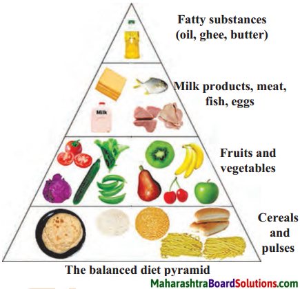 Maharashtra Board Class 6 Science Solutions Chapter 7 Nutrition and Diet 1