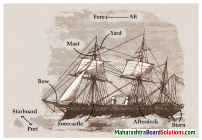 Maharashtra Board Class 7 English Solutions Chapter 2.6 Chasing the Sea Monster 1