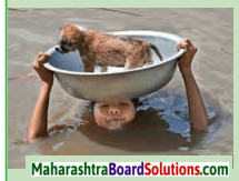 Maharashtra Board Class 10 My English Coursebook Solutions Chapter 1.2 An Encounter of a Special Kind 1.1