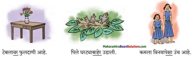 Maharashtra Board Class 7 Marathi Solutions Chapter 7.1 आजारी पडण्याचा प्रयोग 10